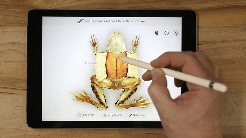 Augmented Reality in Classroom Education