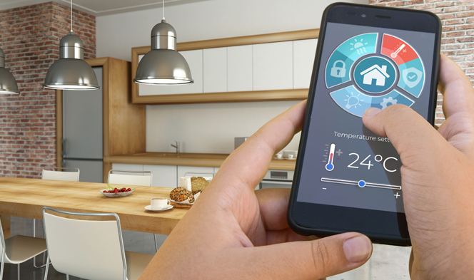 Smart Home Tech: An Accessible Gimmick?